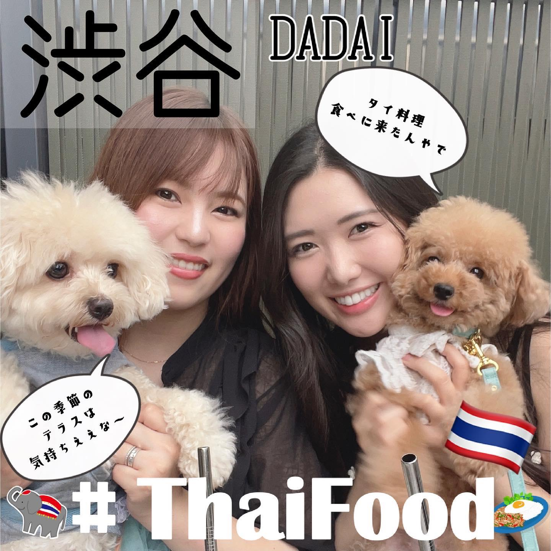 MIYASHITAパークで犬と一緒にタイごはんの画像 (1枚目)
