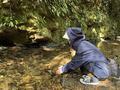 【沖縄・国頭村】自然に囲まれて過ごす贅沢時間の画像