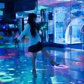 【石川 / 能登】知られざる撮影スポット〝のとじま水族館〟|のと回遊回廊の画像